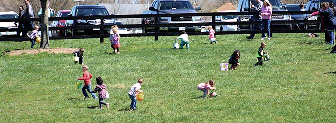 Kids Collecting Eggs in Field