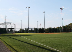 2020 baseball-field-with-grass-i