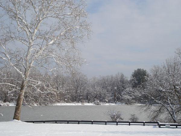 Olde Izaak Walton Park in the snow